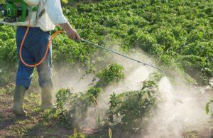 formazione obbligatoria fitosanitari